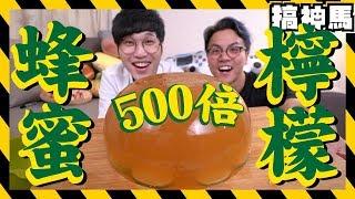 【超巨大】500倍健康!巨大蜂蜜檸檬!