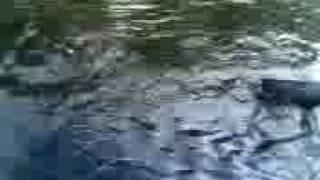 ribolov na reka vardar bojnik skobalj.3gp