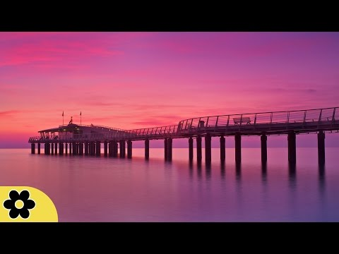 8 Hour Sleep Music, Calm Music for Sleeping, Delta Waves, Insomnia, Relaxing Music, ✿3016C