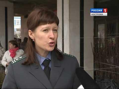 В Костроме инспекторы Россельхознадзора сняли с продажи больше 200 саженцев