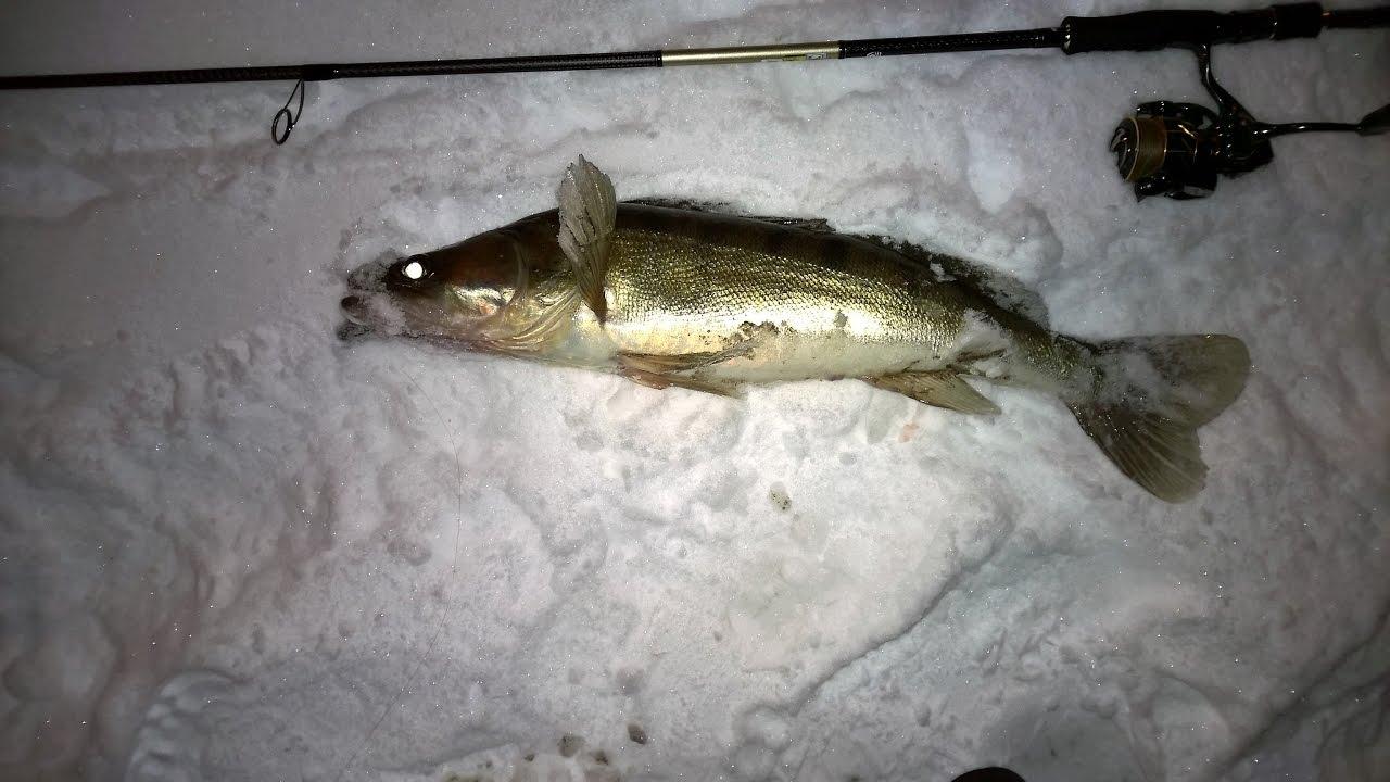 Рыбалка - фото. Марьино - MP. - YouTube