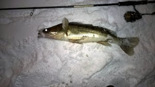 Риболовля - фото. Мар'їно - MP.