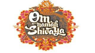 Om Namah Shivaya Sri Sri Ravi Shankar Sacred Chants of Shiva 30 min Version)