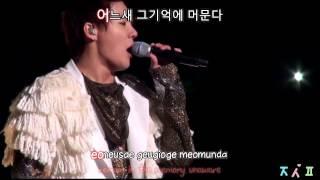 [fancam mix] JYJ - Fallen Leaves (낙엽) [eng + rom + hangul + karaoke sub]