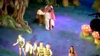 Peter Pan At Nottingham Theatre Royal (wendy House)