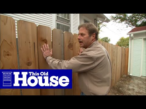How to Plant and Train Vines on a Fence - This Old House