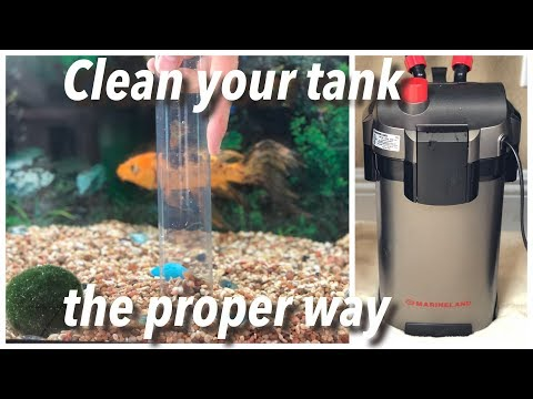 How to clean Marineland Magniflow 220