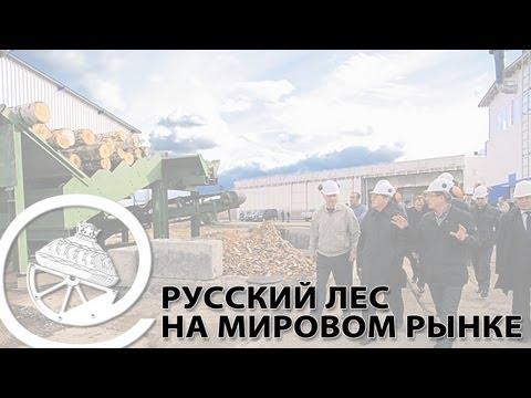 Русский лес на мировом рынке