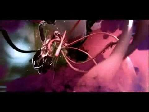 the-tear-garden-phoenix-virgil-pink