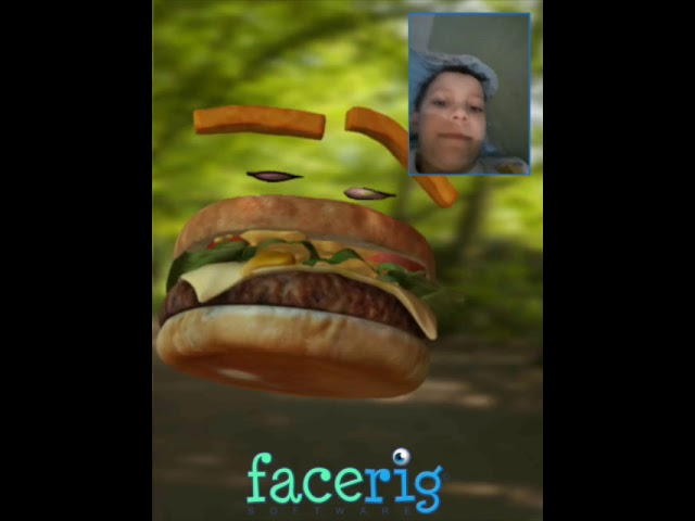 Hambúrguer infelis