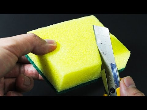 Top 7 Best Life Hacks for Sponge - Sponge Life Hacks