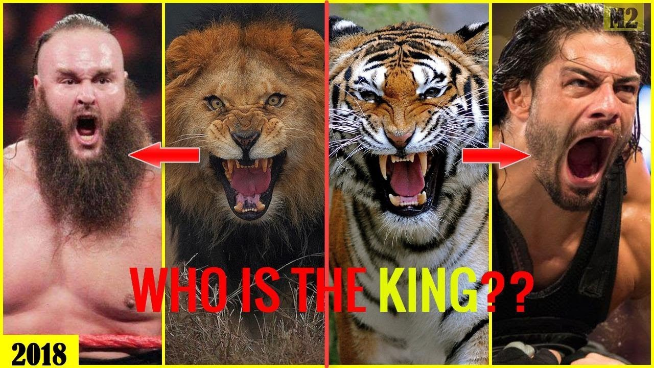 25 WWE SUPERSTARS vs KING ANIMAL 2018 - Who is the WWE KING? [HD]