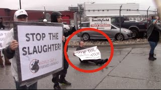 Holocaust Survivor: A Truck Carrying Pigs to Slaughter Almost Ran Me Over!