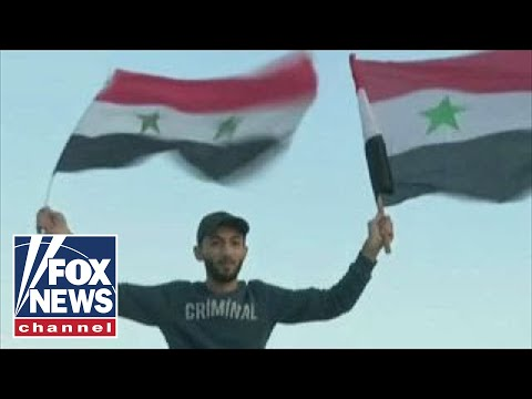 Assad supporters protest following US missile strike