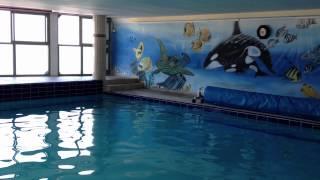 Rental apt Askelon Ashqelon near sea and Marina - indoor swimming pool