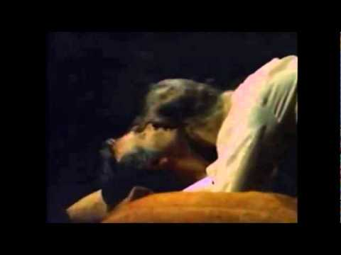 My - Video-Charlie-Zaa-Amemonos-))(*_*)((
