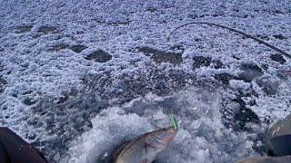 Один на судаковой точке Зимняя рыбалка 2021 на сломе погоды Ловля судака на балансир