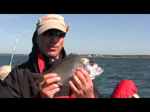 Tips on Bottom Drifting for Fluke, Black Sea Bass, Scup/Porgie with the Viper Spoons