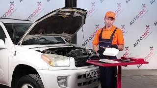 Manual do proprietário Toyota RAV4 III online