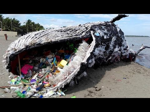 9 TRAGIC Truths About Ocean Pollution!