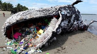 9 TRAGIC Truths About Ocean Pollution! thumbnail