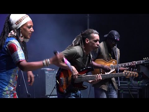 Mo' Kalamity & The Wizards - Live @ Regałowisko 2016