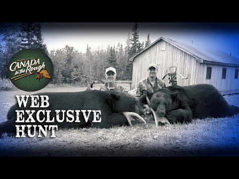 Northern Beasts | Web Exclusive (GIANT Ontario Black Bears)