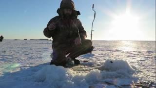 Рыбалка ловим рыбу корюшку,таскаю рыбку в две руки,мы заблудились ау ау Часть # 2