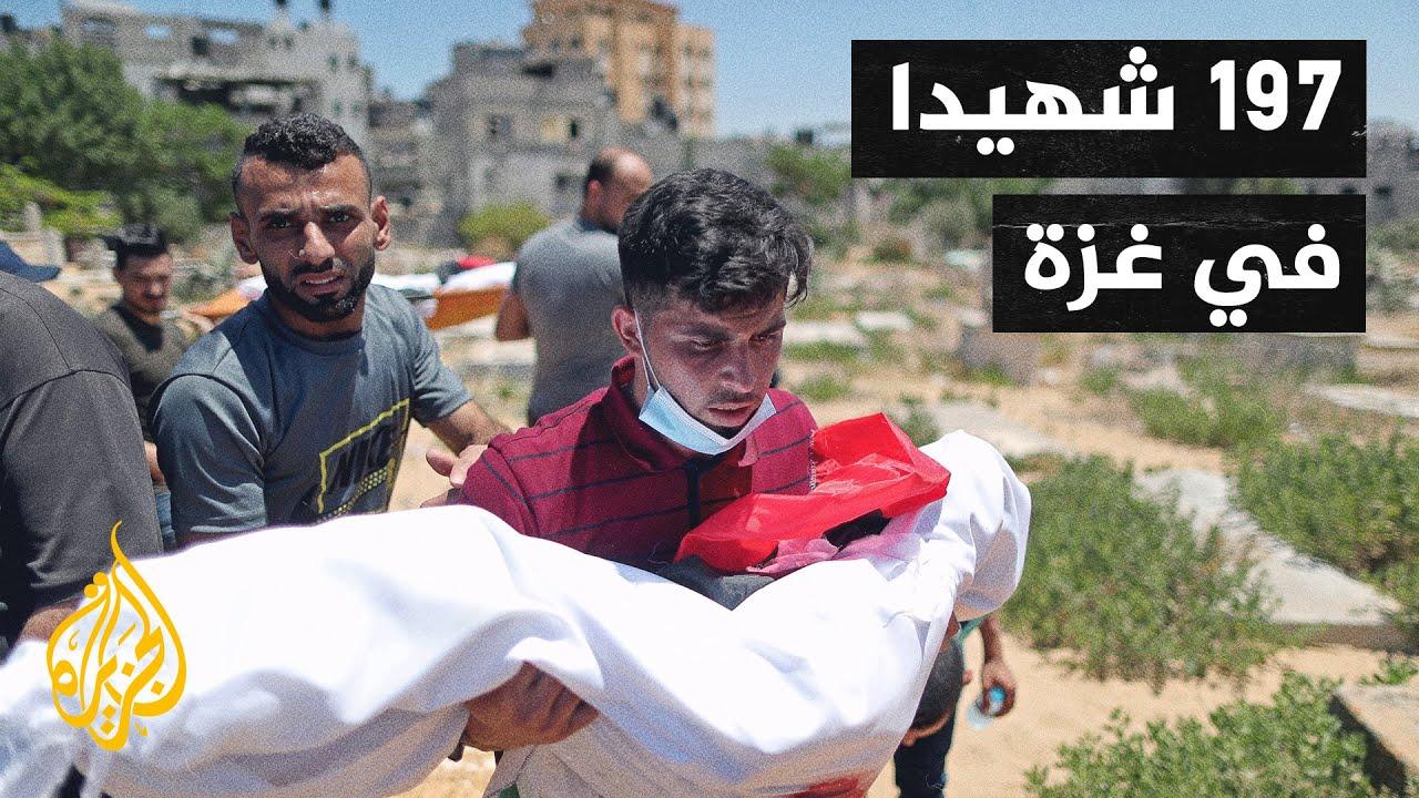 في حصيلة هي الأكبر حتى الآن.. 197 شهيدا في غزة بينهم 58 طفلا و34 امرأة  - نشر قبل 8 ساعة