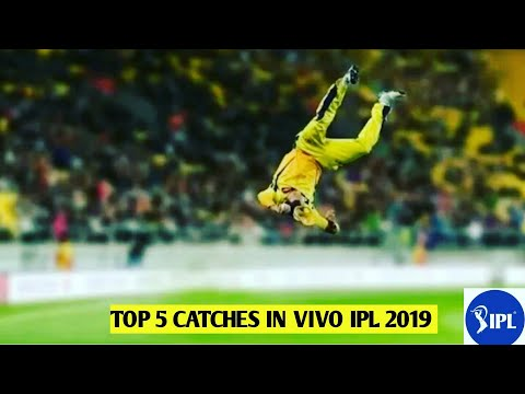 Vivo Perfect Catches In Ipl 2019   Best catches in cricket  