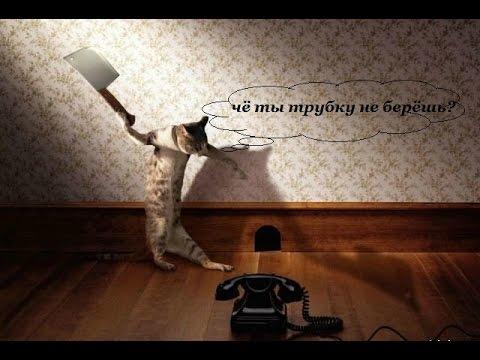 Мелодии на звонок телефона Скачать бесплатно Нарезки