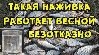 Такая наживка для рыбалки весной работает безотказно