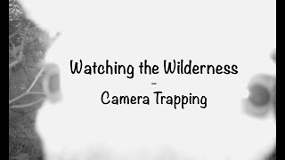 Camera Trap Setup and Video Reactions! - Watching the Wilderness