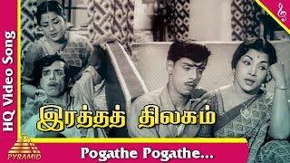 Pogathe Pogathe Song |Ratha Thilagam Tamil Movie Songs | Sivaji Ganesan | Savitri |Pyramid Music