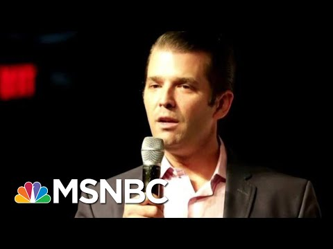 After Michael Cohen's Testimony, What's Next For President Donald Trump's Kids? | Deadline | MSNBC