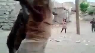 vuclip New whatsapp video donkey dance xxx