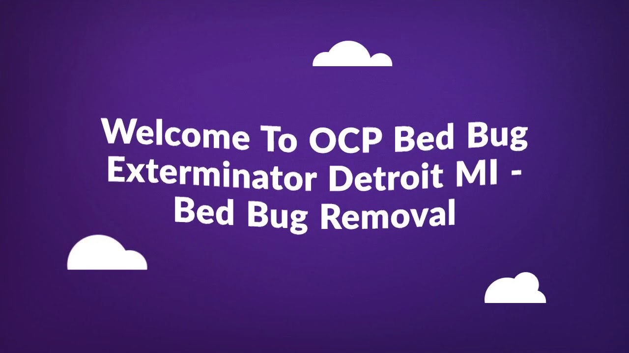 OCP Bed Bug Exterminator in Detroit MI | 313-986-4155