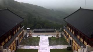TPCam уличная IP-камера, туман, дождь(Запись уличной IP-камеры TP Technology в плохих погодных условиях:туман,дождь., 2012-02-27T10:37:54.000Z)
