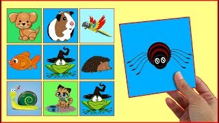 LEARN COLORS With Pets Animals Interactive Game Cards Toy PEXESO #10