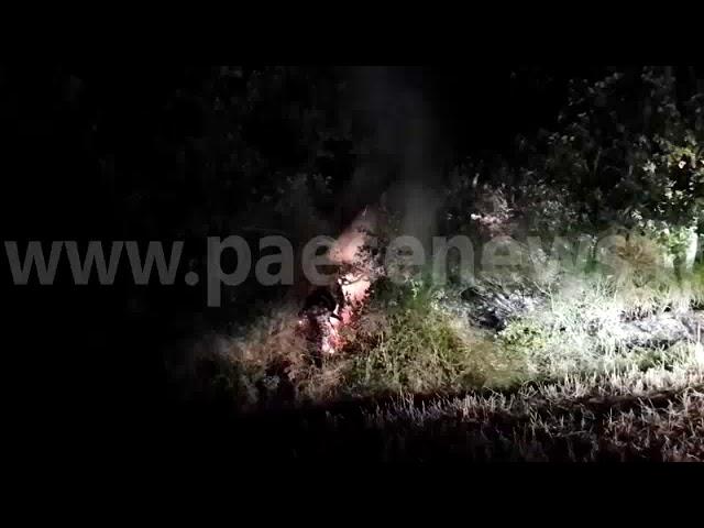 Presenzano incendio montagna lungo Via Provinciale 24/08/2019
