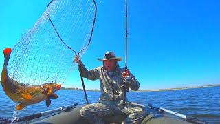 КРУПНЫЙ САЗАН ПОПЁР ПОД ВЕЧЕР СО СТРАШНОЙ СИЛОЙ ЭТО НАДО ВИДЕТЬ Рыбалка на донки