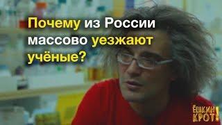 Почему молодые ученые уезжают из России?