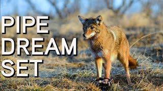 Pipe Dream Set for Coyotes | HOW TO