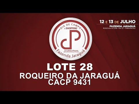 LOTE 28 (CACP 9431)