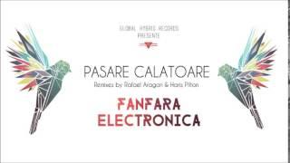 Pasare Calatoare - Fanfara Electronica [Haris Pilton Remix]