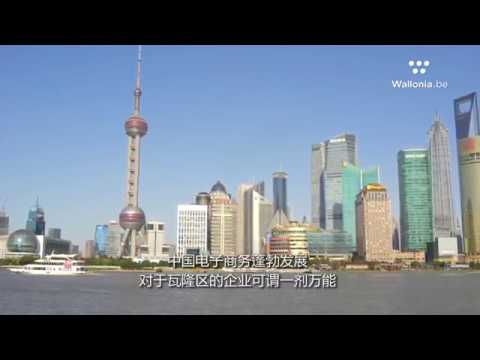 AWEX在上海的旅游 - AWEX's e-commerce mission in Shanghai (short)