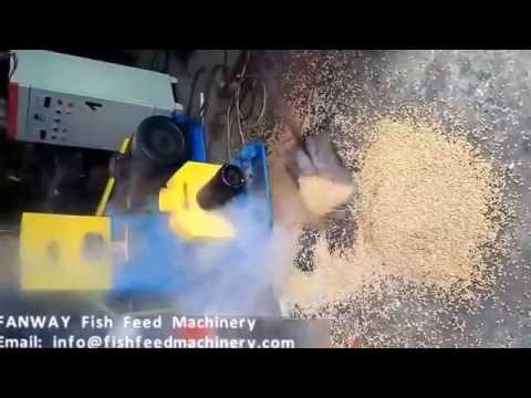 FANWAY 300kg/h Floating fish feed machine