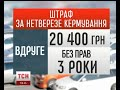 В Україні можуть зрости штрафи за кермування в нетверезому стані