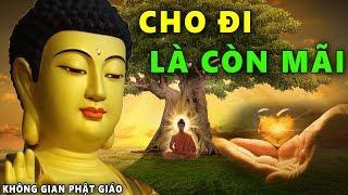 Đêm Trằn Trọc Khó Ngủ Hãy Nghe Phật Kể Truyện Nhân Quả Hiện Tiền Cho Đi Không Mất Phước Điền Về Sau
