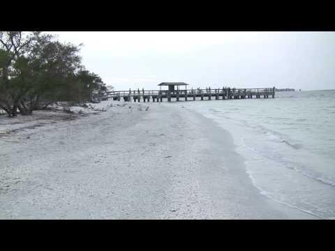Sanibel island fishing pier 3 17 09 youtube for Sanibel fishing pier